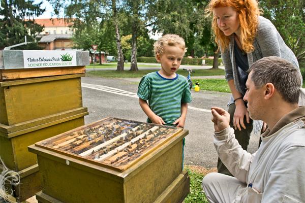 Stadtparkbienen Imker