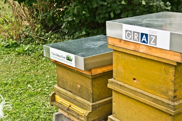 Bienenstöcke im Stadtpark